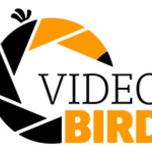 VideoBird.nl